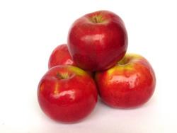 apple pectin fiber
